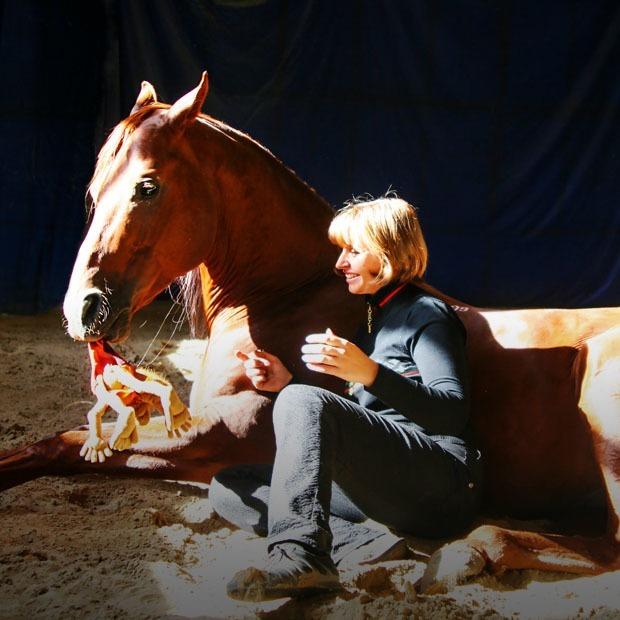Ученый Елена Молчанова — о том, как научить лошадей читать, а людей — уважать живых существ  — Интервью на The Village Казахстан