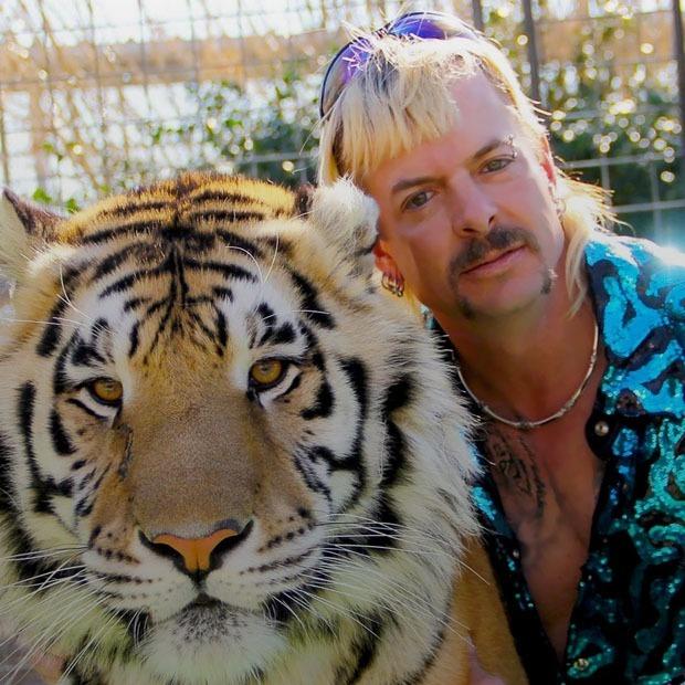 «Король тигров» — сериал, который превратился в мем. Рассказываем, почему — Сериалы на The Village Казахстан