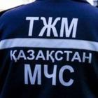 В состав МЧС РК вошли четыре комитета