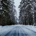 На 40 % увеличилось число ДТП в столице за день из-за снегопада