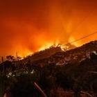 Ученые: Июль оказался рекордным по лесным пожарам в мире