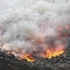 В Восточном Казахстане тушат пожар на мусорном полигоне