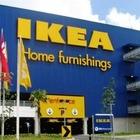 IKEA будет сдавать в аренду мебель