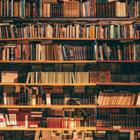 Команда волонтеров запустила краудфандинг для открытия сети сельских библиотек