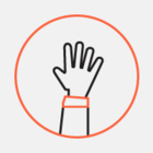 Казахстанский стартап Nommi запустил кампанию на Indiegogo