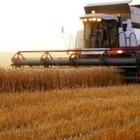 НСОД рассмотрит вопрос продажи земель сельхозназначения