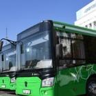 Аким Алматы заявил, что лучше тратить деньги на электроавтобусы, чем развивать троллейбусные сети