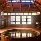 Горячие источники в Японии можно посетить из домашней ванны
