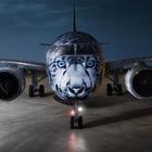 Самолет со снежным барсом презентуют в Air Astana