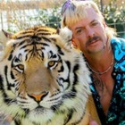 Зоопарк из сериала Netflix «Король тигров» закрывают