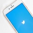 Куриное яйцо, «Игра престолов» и пожар в Нотр-Даме. Twitter подвел итоги года