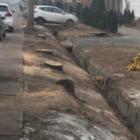 На вырубку деревьев в Алматы отреагировал Токаев