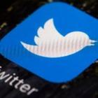 В твиттере набирает популярность сатирический тред c фотографиями массовых задержаний