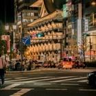 Японская полиция просит пьяных людей не засыпать на дорогах