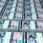 На внеочередные выборы президента выделят 9,4 миллиарда тенге