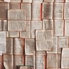 Пушкинский Дом открыл доступ к архиву данных по русской литературе и фольклору