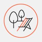 На Кок-Жайлау пройдет Большой алматинский пикник