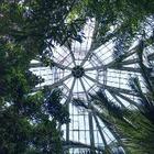 Ботанический сад Алматы закроют на четыре месяца