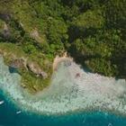 В Таиланде запретили вредные для кораллов солнцезащитные кремы