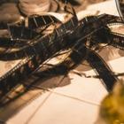 Казахстанский фильм «Последний учитель» получил приз на фестивале в Турции