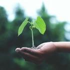 Весь годовой запас возобновляемых ресурсов Земли истрачен