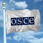 ОБСЕ подвела итоги президентских выборов в Казахстане