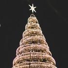 2 декабря зажгут одну из самых роскошных елок в городе