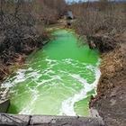 В реке в ВКО позеленела вода