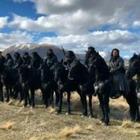 Казахстанские каскадеры показали видео и фото со съемок «Мулан»