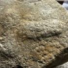 Археологи нашли древнеримский жернов с изображением большого пениса