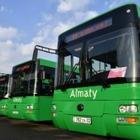 Новые автобусные маршруты появятся между пригородом и Алматы