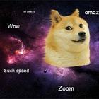 «Первый мем в космосе»: SpaceX запустит спутник Doge-1, названный в честь мема