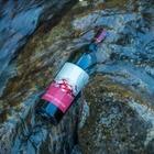 Доставка вина на дом, экскурсии и дегустации: Новое мобильное приложение от Arba Wine