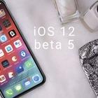 В новых айфонах возможно наличие двух сим-карт
