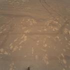 NASA опубликовали цветное фото Марса, сделанное беспилотным вертолетом