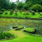 С апреля в Астане Ботанический сад будет открыт для посетителей