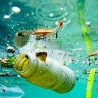 Страны Большой двадцатки договорились бороться с пластиковым мусором