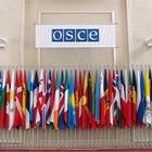 Активисты пикетировали здание ОБСЕ в столице