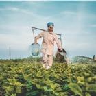 Рынок труда: Какие специалисты нужны Казахстану сейчас