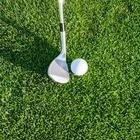 Учителей заставили убирать поле для гольфа. Что говорят в МОН?