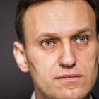 Группа профессоров выдвинула Навального на Нобелевскую премию мира
