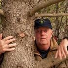 Лесники Исландии обнимаются с деревьями, потому что с людьми нельзя