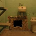 Наркодилер прорыл тоннель из камеры в канализацию. И сбежал