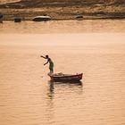Десятки тел прибило к берегам реки Ганг