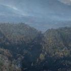 Пожар в Баянаульском нацпарке потушили
