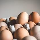 Цены на яйца в Казахстане вернутся к уровню начала года