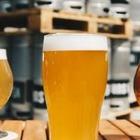Археологи нашли самую древнюю в мире пивоварню