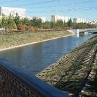 Река Акбулак в Астане загрязнена выше допустимого значения