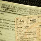 Назара Роллана, внука Роллана Сейсенбаева, лишили водительских прав на полгода