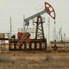 «КазМунайГаз» очистит Западный Казахстан от нефтяных загрязнений